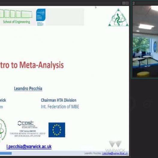 Introduction to the meta-analysis